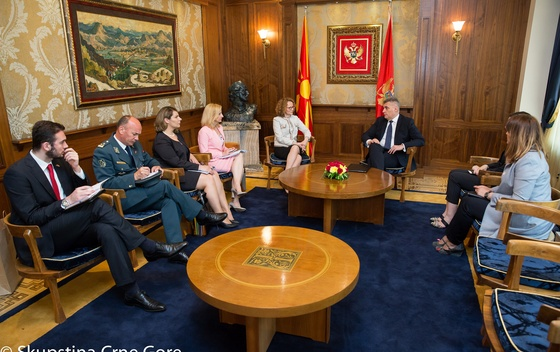 Montenegro and Macedonia Are Natural Regional Allies